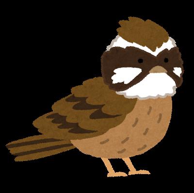 bird_hoojiro